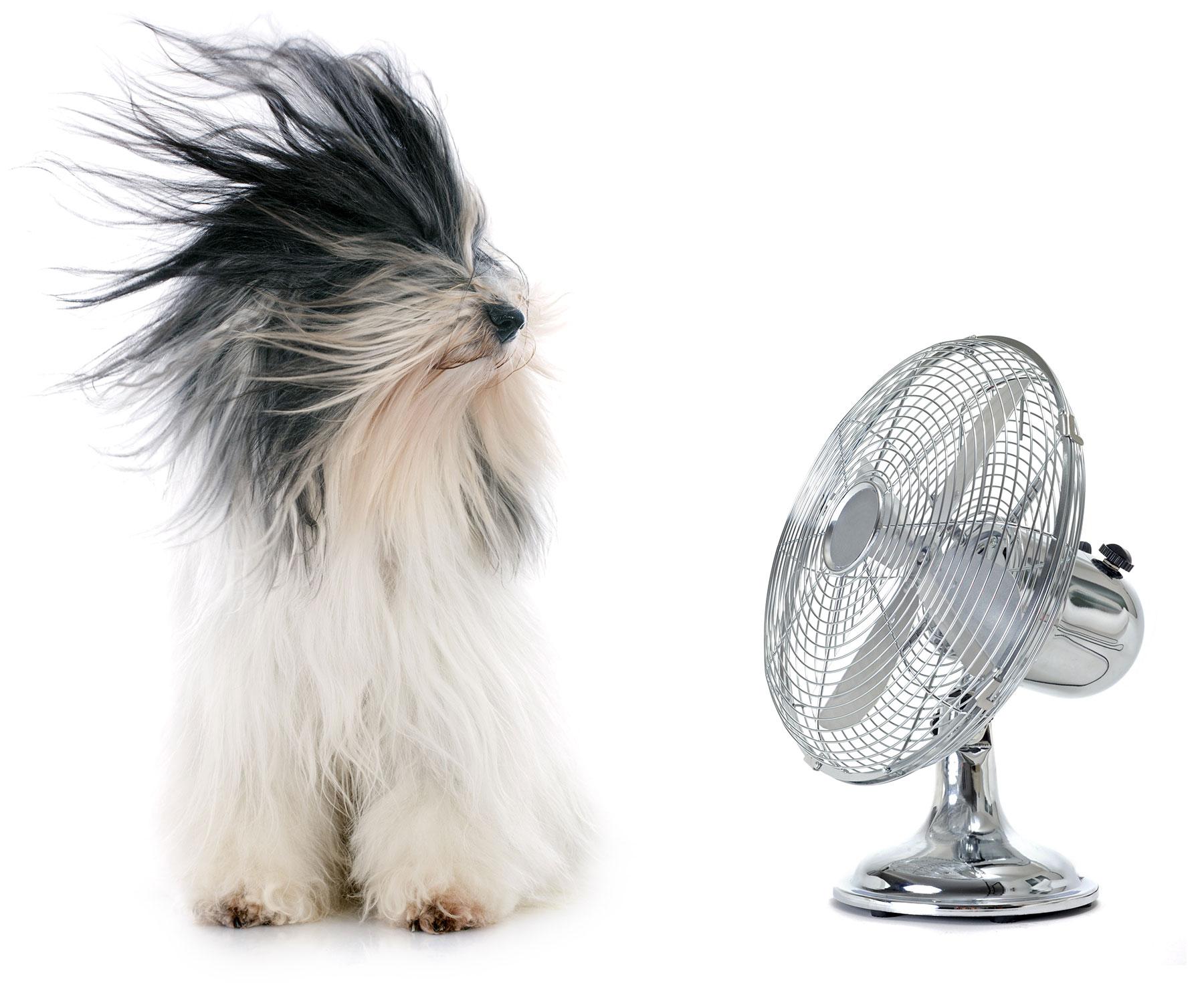 Aire acondicionado en Sevilla. Eclisur expertos en climatización